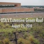 UTA's Extensive Green Roof