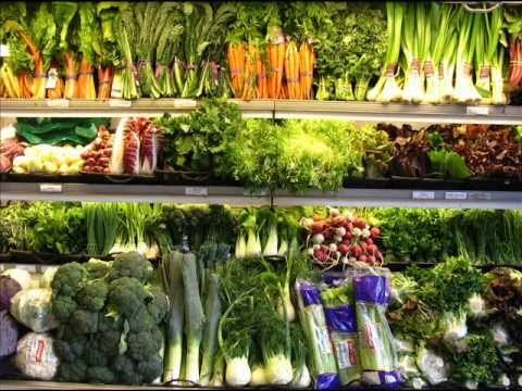 Hydroponic Garden for profit at $918 per square foot, income, annually Part One