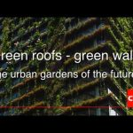 Green Roofs – Green Walls. The urban gardens of the future?