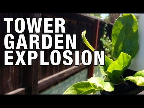 """Tower Garden Growth Explosion!"" by Epic Gardening"