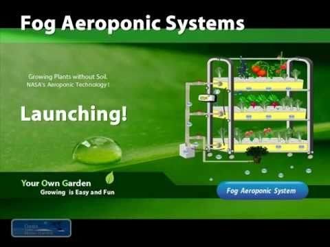 Fog Aeroponic Systems 植物工場