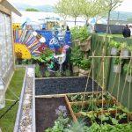 Simple School garden ideas