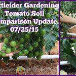 Mittleider Gardening: Tomato Soil Comparison Update 07/25/15