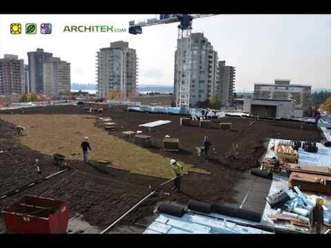 How To Build A 40,000 Square Foot Green Roof in 2 Minutes!