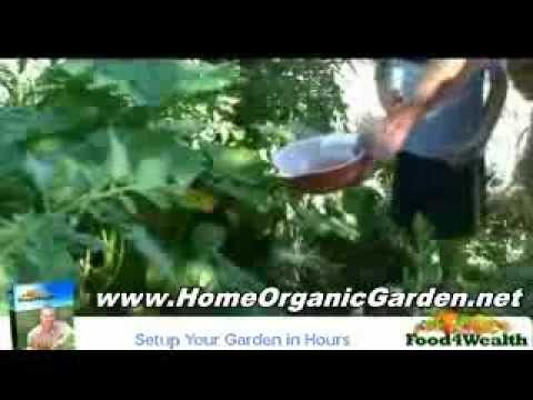 How to Create & Manage an Organic Garden : Lighting an Indoor Organic Garden