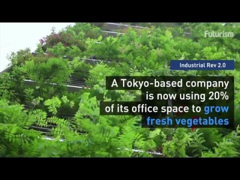 The Newest Trend In Tokyo – Vertical Farms