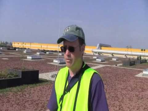 ProGrass Presents: Green Roofs in Hungary (Unirrigated and Extensive)