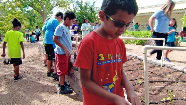 Garden-Based Learning: Engaging Students in Their Environment