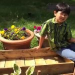 How To Build Garden Box For Under $10 (Part 1): Gardening Ideas DIY Made Simple By Aiman