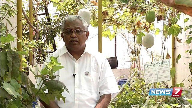 Benefits of organic terrace gardening | Poovali | News7 Tamil