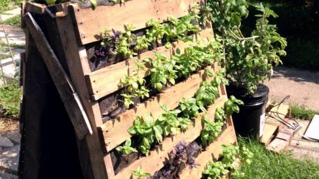 Holz Europaletten Vertikal Garten Pflanzen Praktisch Gras Idee