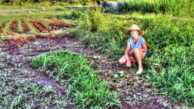 The Kids Plant A Summer Vegetable Garden | Homestead Kids