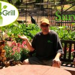 Vegetable Gardening Survival At Home 2016