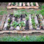 Pallets garden ideas