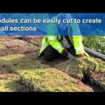 How to build a green roof – Wallbarn M-TRAY®