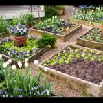 raised beds – raised beds and planters