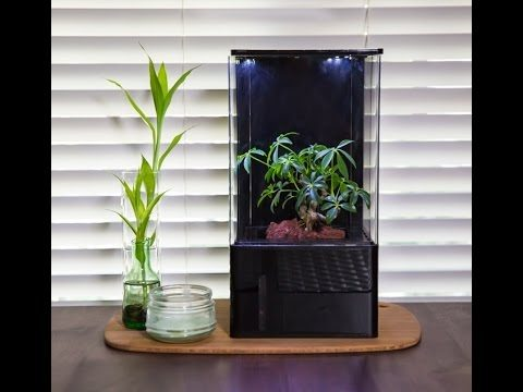 futuristic indoor gardening systems that will blow your mind