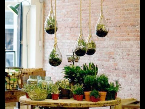 13 Ideas to Design With Houseplants