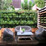 Vertical Garden Wall DIY