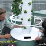 The Easiest Way to PH Balance Your Tower Garden – real food. real life.