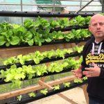 Chilli Farm – Aquaponics & Hydroponics –  DIY NFT System Setup
