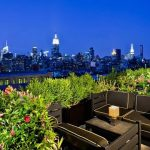 Going Green with Rooftop Gardens