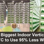 World's Biggest Indoor Vertical Farm Near NYC to Use 95% Less Water