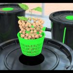 Alien® RDWC hydroponic system operation video dwc
