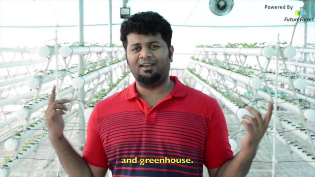 Behind the Scenes with Future Farms (India) – Our Hydroponic Rooftop Farm – Latest Update