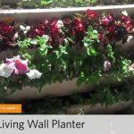Top 5 Living Wall Planters | hayneedle.com