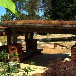 go! Island visits BC Green Roof – Shaw TV Duncan