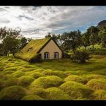 Beautiful Houses With Green Roofs Look Straight Out Of A Fairytale