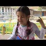 TUSD1 – Hollinger PreK-8 School Gardens!