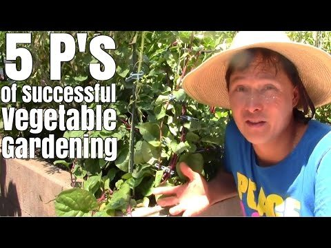5 P's of Successful Vegetable Gardening