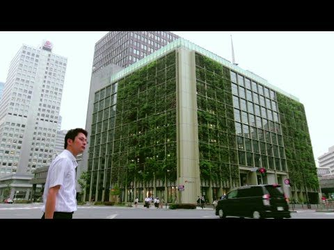 The Newest Trend In Tokyo: Vertical Farms
