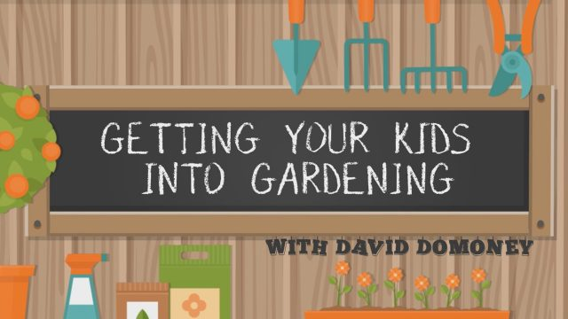 Getting your kids into gardening with David Domoney