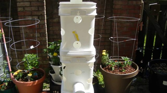 COMPOSTING SELF FEEDEING ORGANIC GROW TOWER BASIC SET UP
