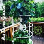 Tower Garden by Juice Plus – Grow your own food! By: Sanura Moon