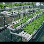 DIY Plans How To Build Cheap Homemade Indoor Hydroponic Systems