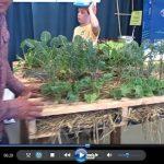 Waist High Pallet Garden & More at the 2013 SF Flower and Garden Show