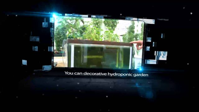 Hydroponic Systems Updates – Hydroponics Growing Systems & Equipment