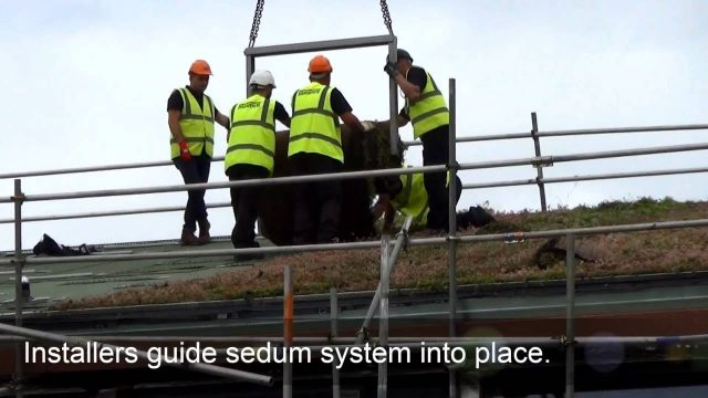 R&A Equipment Testing Centre – Green Roof Sedum System Installation by Bauder