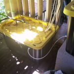 """Best Hydroponic Setup """"Drain To Waste"""" System"""