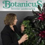Living Green Wall Systems for Easy Plant Care by BotanicusGreen