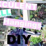 SUCCULENT WALL PLANTER | DIY | EMMA
