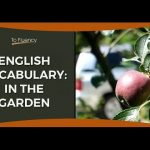 Learn English Vocabulary – In the Garden (Two Phrases)