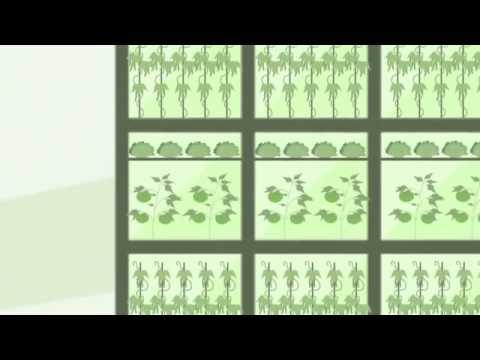 The Future of Food   Vertical Farming, Nanotech   2013