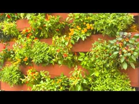 Como montar seu jardim vertical com GreenWall Ceramic n.02