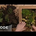 DIY Succulent Wall Frame | Glam It Yourself ★ Mode.com