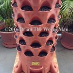 6   Setting Up The Garden Tower  – Adding Worms